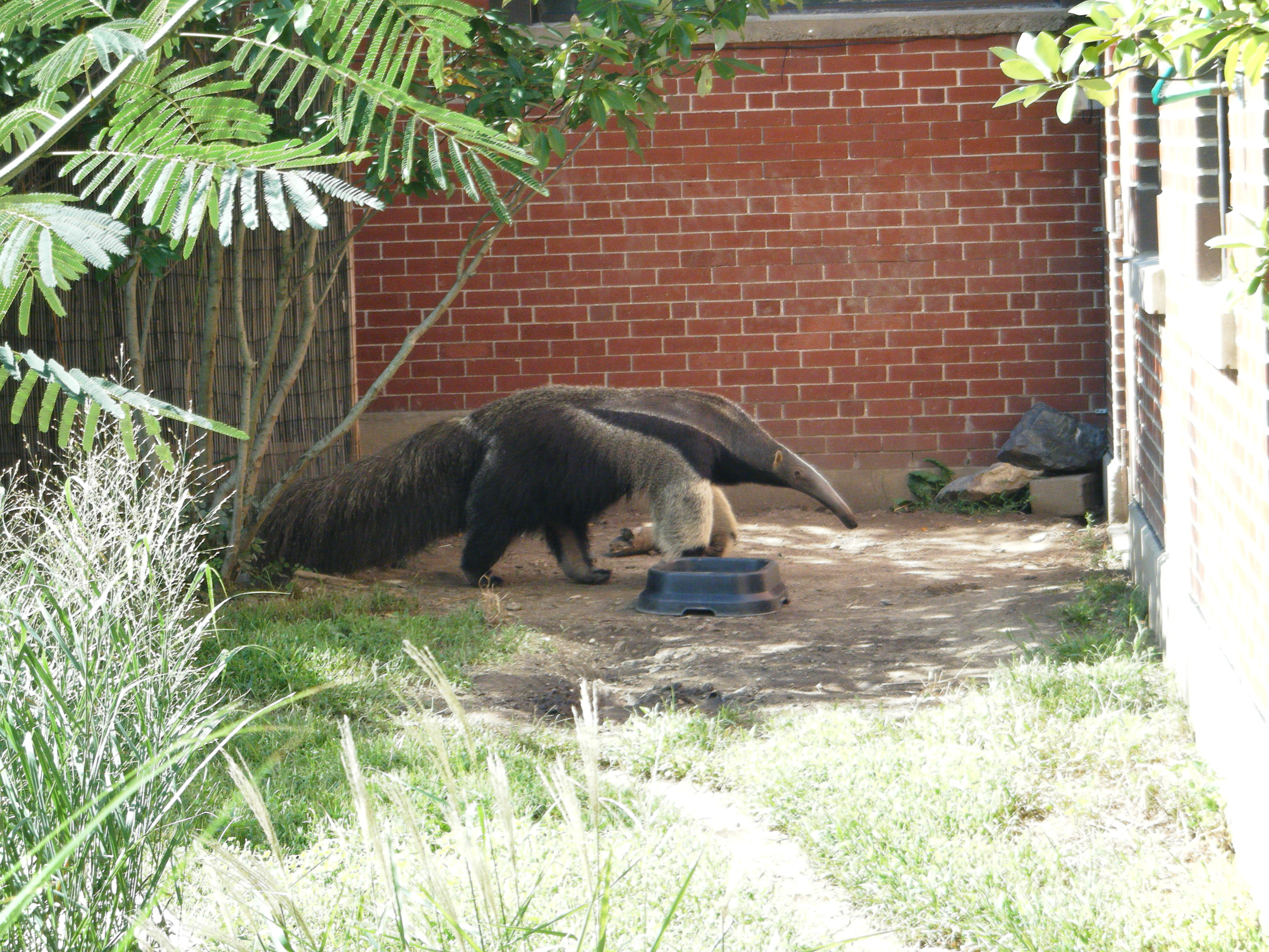 Image Result For Rhode Island Zoo